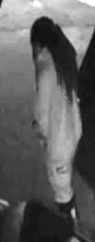 Pimpernel Drive Theft - Suspect 1 (002)