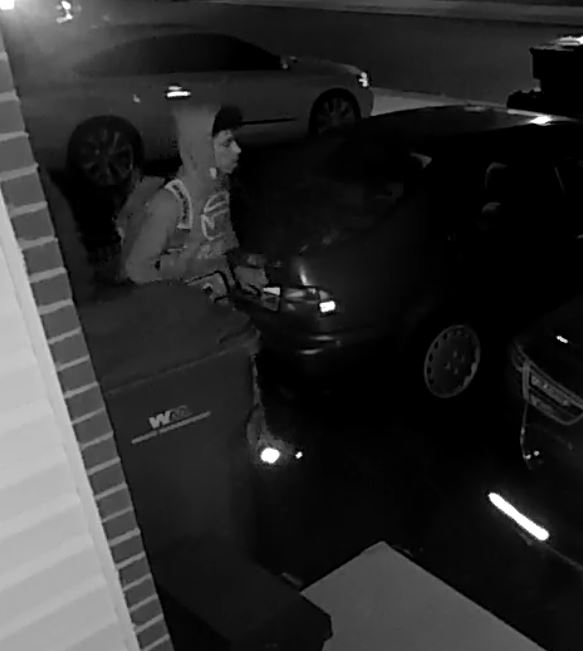 Suspect (pic1)